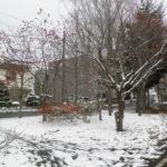 b6ead95e s 150x150 - 北海道の冬の生活02 ~雪の中歩いてみた~