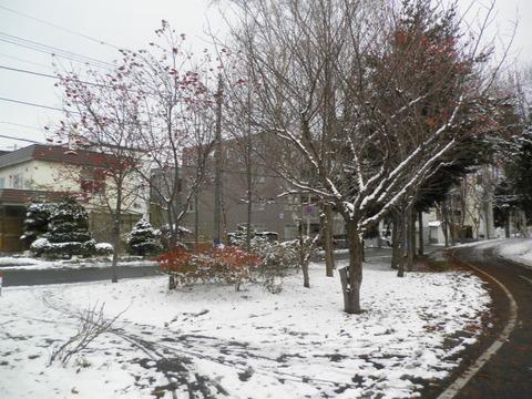 b6ead95e s - 北海道の冬の生活02 ~雪の中歩いてみた~