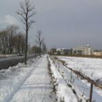 09fabe16 s 150x150 - 北海道の冬の生活04 ~初めての本格的な雪~