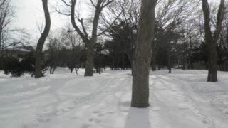 a74bb302 s 320x180 - 札幌市内観光 ~月寒公園~
