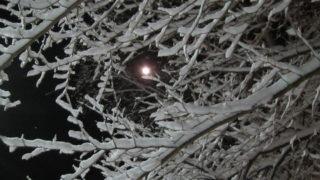 043e8a84 s 320x180 - 北海道で沢山雪降ったよー