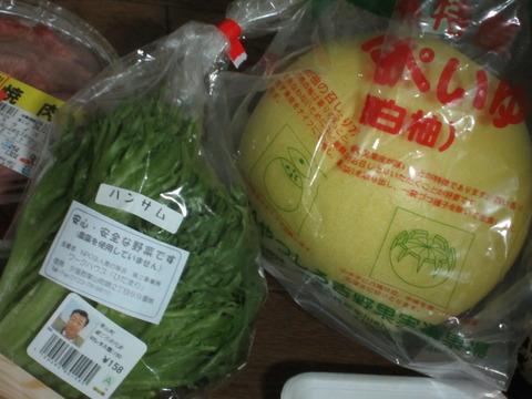 f3ca9460 s - 晩白柚(ばんぺいゆ) / ハンサム