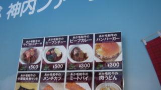 10e9c406 s 320x180 - 2013年 さっぽろ雪祭りPart2 ~出店関係 / ミニ雪像紹介~