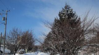 6b083143 s 320x180 - 2013年 さっぽろ雪祭りPart1 ~初日の天気気温、他大雪像紹介~