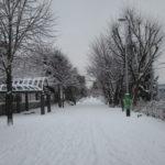 9ca6413d s 150x150 - 今日はちょっとばかり吹雪いてて大変でした