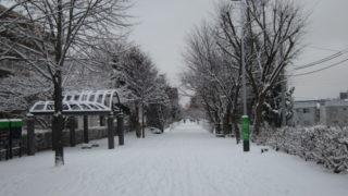 9ca6413d s 320x180 - 今日はちょっとばかり吹雪いてて大変でした