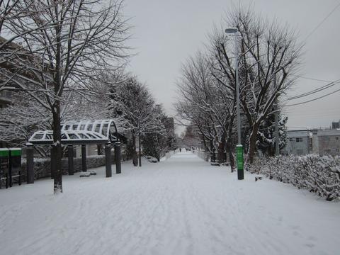 9ca6413d s - 今日はちょっとばかり吹雪いてて大変でした