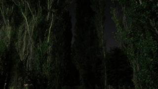 b08a7960 s 320x180 - 北大の敷地で月食を見てきた