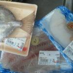 ff6f027b s 150x150 - 魚介類を干してみたヒラメ編