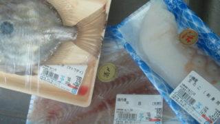 ff6f027b s 320x180 - 魚介類を干してみたヒラメ編