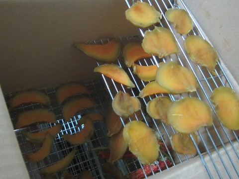 cbe21a6f s - 安納芋で干し芋作りますPart2 / 厚切りと細切りで干してみた