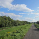 IMG 0038 150x150 - 厚別川沿いのマックスバリューでお買い物 / 休日のお散歩Part02
