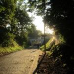 IMG 0058 150x150 - 道端で見かけたキノコとか木の実 / 休日のお散歩Part03
