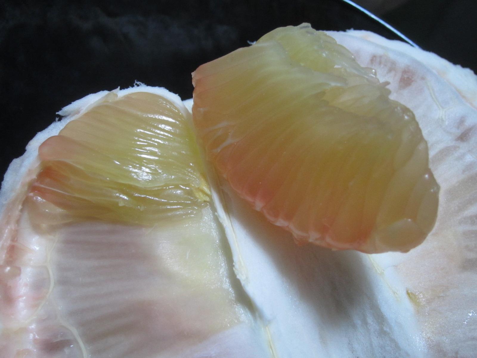 IMG 0094 - 文旦(ぶんたん)とゆー名前の柑橘系フルーツに挑戦