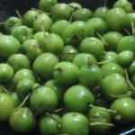 IMG 0038 150x150 - コクワ(サルナシ)食べてみた / 八百屋の野菜とか