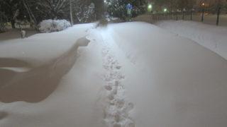 IMG 0063 320x180 - なんかまた大雪で凄いドッサリ積もりました