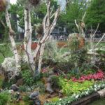 IMG 0079 150x150 - 花フェスタ2017札幌とゆー大通公園のイベントに行って来ました 前編