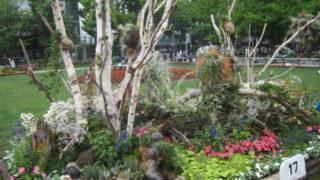 IMG 0079 320x180 - 花フェスタ2017札幌とゆー大通公園のイベントに行って来ました 前編