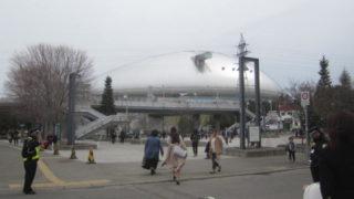 IMG 0037 1 320x180 - 札幌ドームへ安室奈美恵のコンサート日に散歩行ってきました