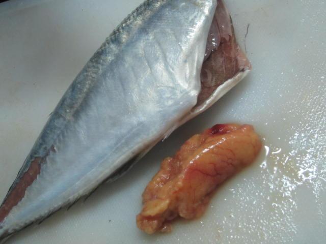 IMG 0069 - 長崎のアジ買ったら腹の中に卵が居たので醤油煮にしてみた