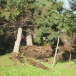 IMG 0016 150x150 - 北海道地震前日の様子というか台風21号の爪痕【2018全道停電録Part01】