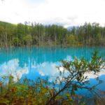 IMG 0094 150x150 - 美瑛の青い池がそこかしこ工事されて整備されてました