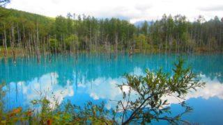 IMG 0094 320x180 - 美瑛の青い池がそこかしこ工事されて整備されてました