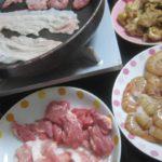 IMG 0004 150x150 - 豚ロース肉とスプリングラムの焼肉をボタン海老のお刺身と共に