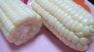 IMG 0031 320x180 - 朝もぎの白いフルーツとうきび雪の妖精をレンジでチン