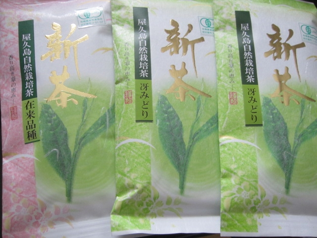 IMG 0081 - 屋久島自然栽培茶の「在来品種」はとても強いお茶でした