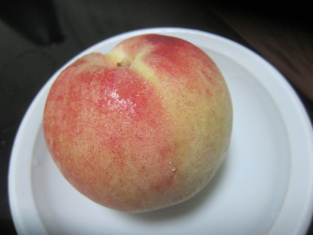 IMG 0035 - 北海道仁木町産のりんごのアイスバー食べてみた