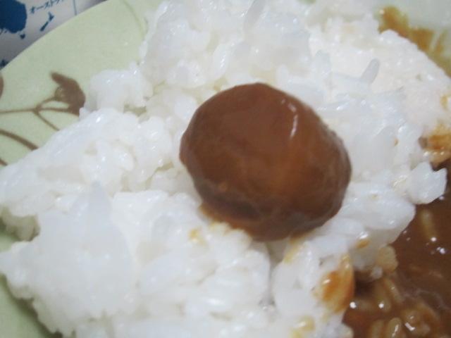 IMG 0024 - 北海道名産ほたてカレー コーン入り【北海道ご当地カレー食べてみたPart07】
