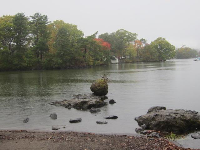 IMG 0049 - 札幌発の函館バスツアー行って来たPart01 雨の中での大沼湖遊覧と散歩