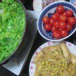 IMG 0010 150x150 - ダイコンとわさび菜とトマトの鍋というかスープ?
