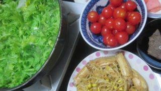 IMG 0010 320x180 - ダイコンとわさび菜とトマトの鍋というかスープ?