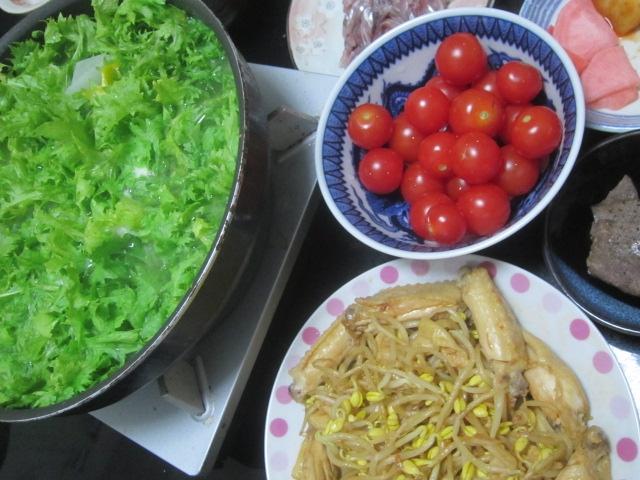 IMG 0010 - ダイコンとわさび菜とトマトの鍋というかスープ?