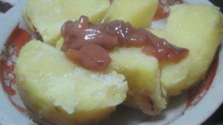 IMG 0047 320x180 - 紅丸というジャガイモにイカの塩辛乗せて食べてみた