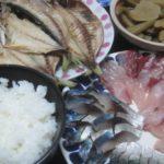 IMG 0031 150x150 - セレベスという里芋の煮物とアジの開き3枚