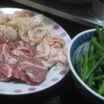 IMG 0025 150x150 - 生ラムと鶏皮のネギ焼き晩御飯