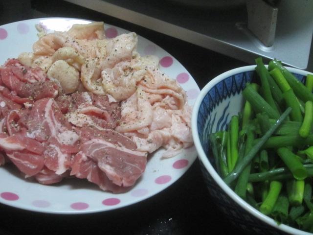 IMG 0025 - 生ラムと鶏皮のネギ焼き晩御飯