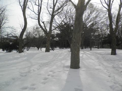 札幌市内観光 ~月寒公園~