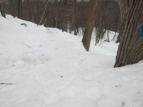 IMG 01011 480x360 - 冬の雪山登山に挑戦 / 円山に登ってきましたPart1