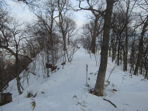 IMG 01191 480x360 - 冬の雪山登山に挑戦 / 円山に登ってきましたPart2