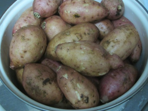 IMG 0134 480x360 - 今年三回目の安納芋を通販購入しました