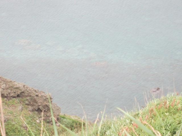 IMG 0077 640x480 - 積丹半島 神威岬の端まで行ってみた / 後編