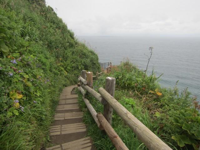 IMG 0082 640x480 - 積丹半島 神威岬の端まで行ってみた / 後編