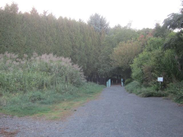 IMG 0004 640x480 - 夕暮れの街を散策してなごやか亭へ / 休日のお散歩Part04