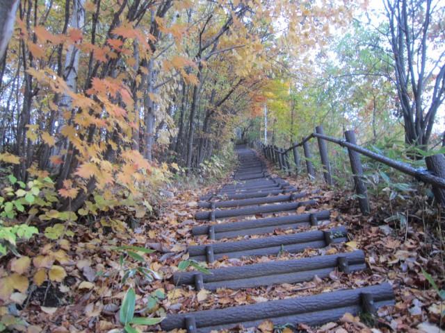 IMG 0112 640x480 - 平岡公園と上野幌業務スーパー / 休日のお散歩Part08