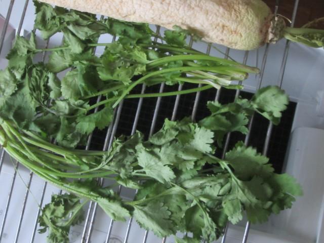 IMG 0081 640x480 - パクチーとかゆー流行してるらしいクセの強い野菜に初挑戦