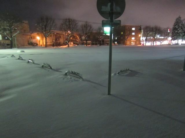 IMG 0005 640x480 - 今年の札幌は雪が降るのが随分遅かったように思います